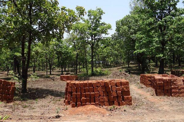 23716 Industrial Projects Replace Forests Over 30 Years