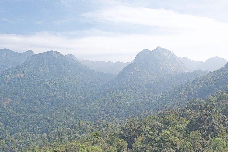 Silent Valley A controversy that focused global attention on a rainforest 40 years ago