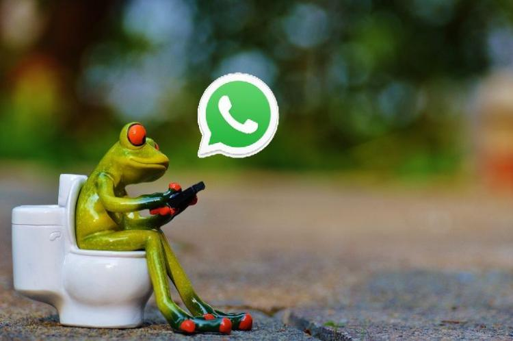 WhatsApp group admin You are an intermediary and heres what you need to know