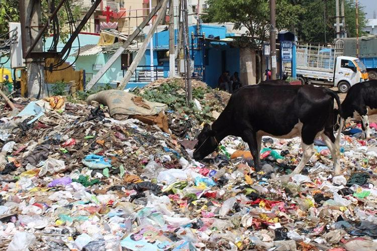 BBMPs new plan to improve waste segregation in Bengaluru Will it work this time