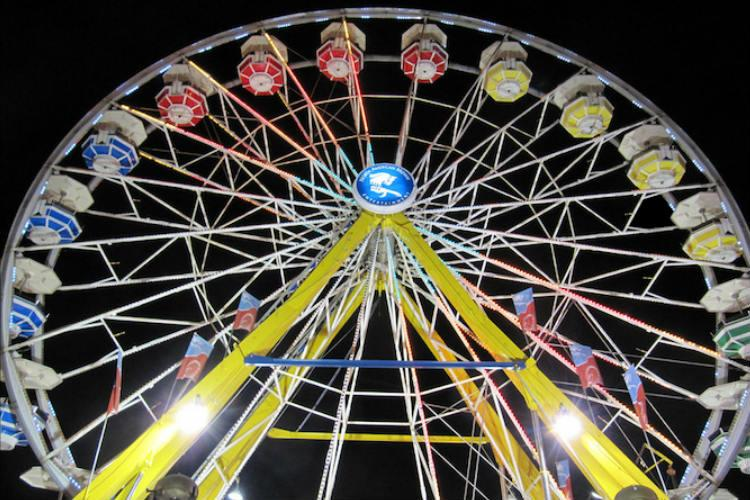 Man critical after falling off giant wheel at Robotic Birds Exhibition in Bengaluru