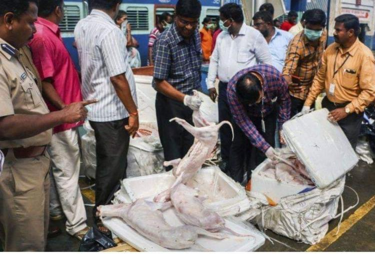 Rotten meat seized from Chennai railway station not dog meat