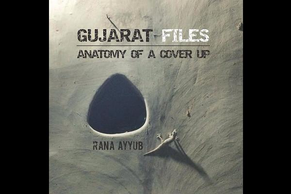 Troll attack Rana Ayyubs Gujarat Files sees down-rating on e-retail sites