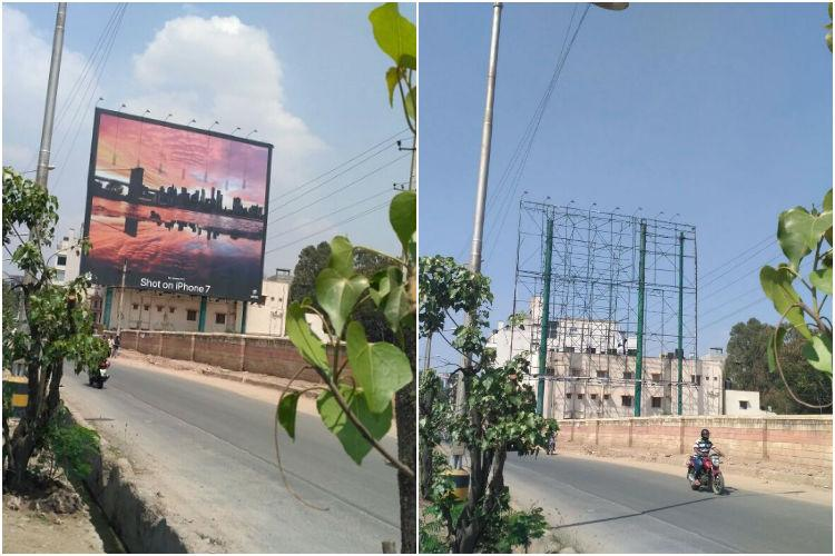Victory for Bengaluru Two illegal hoardings for which trees were murdered taken down