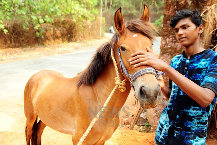 This Kerala teen wanted a motorbike but his father gifted him a horse instead