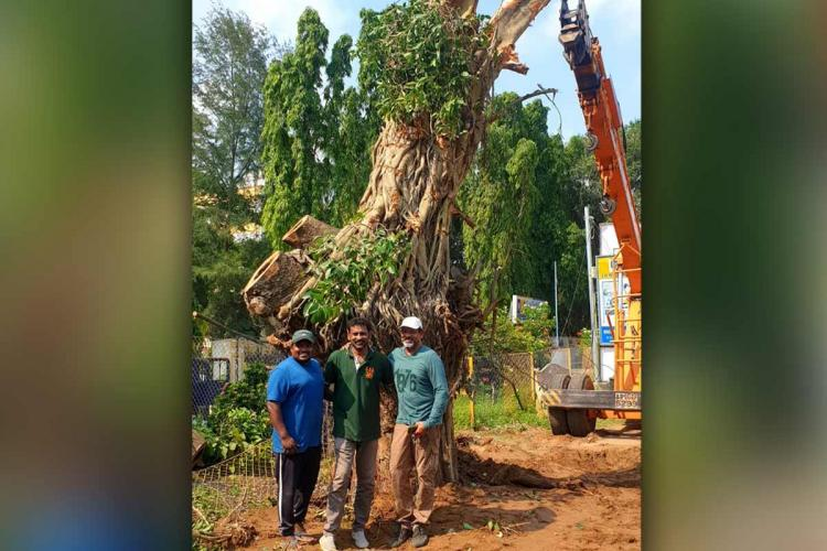 Residents of Machilipatnam, Vata Foundation standing in front of the translocated tree