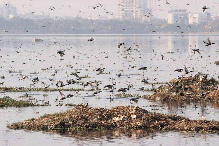 Hyderabad residents raise a stink about the stench from Hussain Sagar Lake