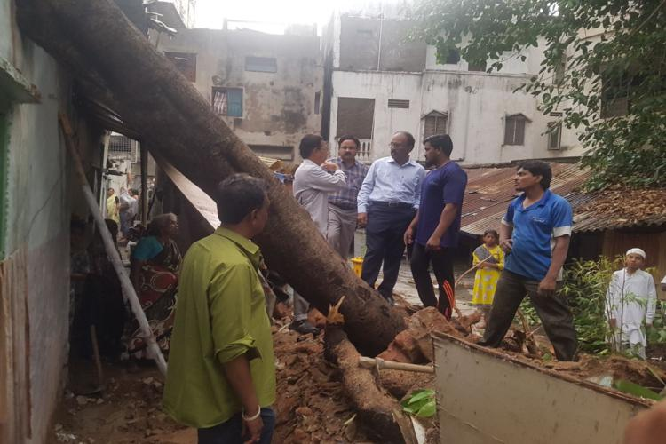 Heavy rains and strong winds lash Hyd Two die 162 trees uprooted