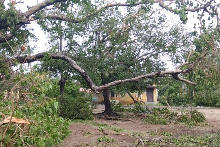 11 people killed after Cyclone Gaja hits TN Nagapattinam worst-hit