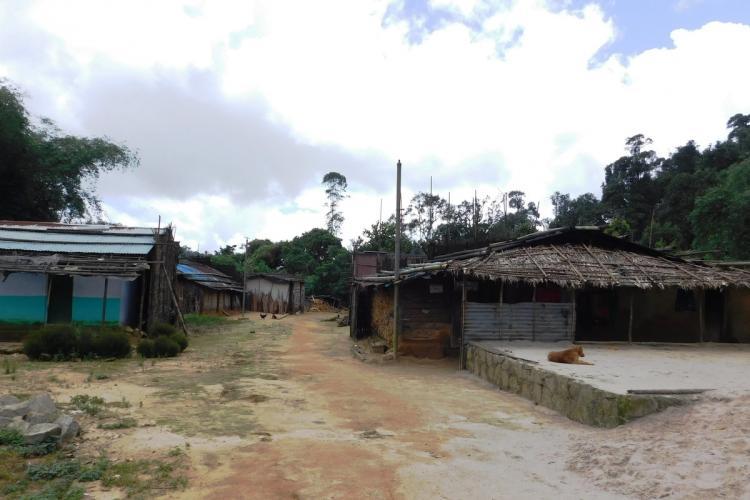 Edamalakkudy in Idukki district is the first tribal panchayat in Kerala