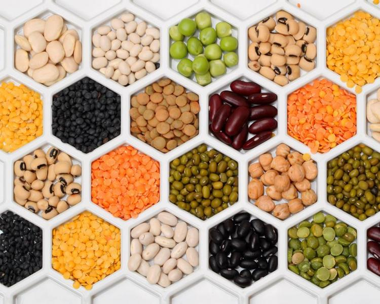 Image result for Pulses Or Dal