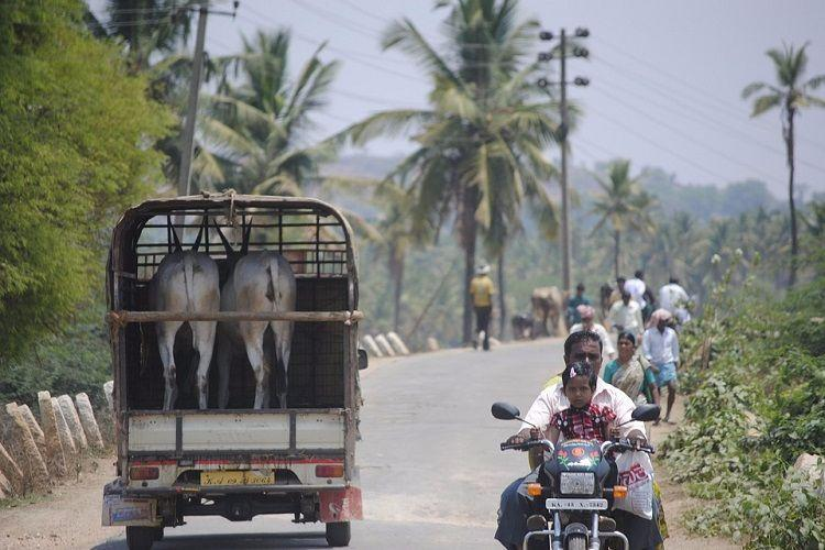 As govt pumps in more money to build roads in rural areas the pace of construction slows down