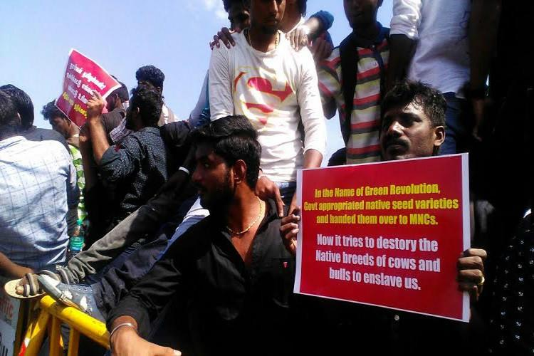 Nadigar Sangam to go on hunger strike in support of Jallikattu protesters
