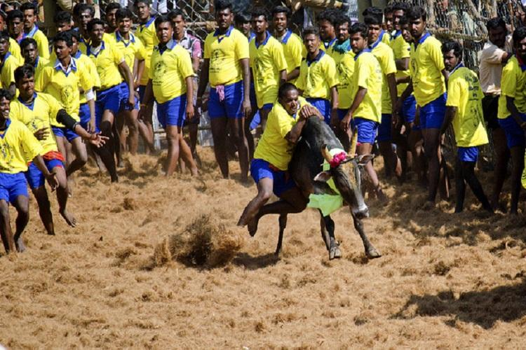 Pon Radhakrishnan should quit if Jallikattu ban remains says TN Congress chief