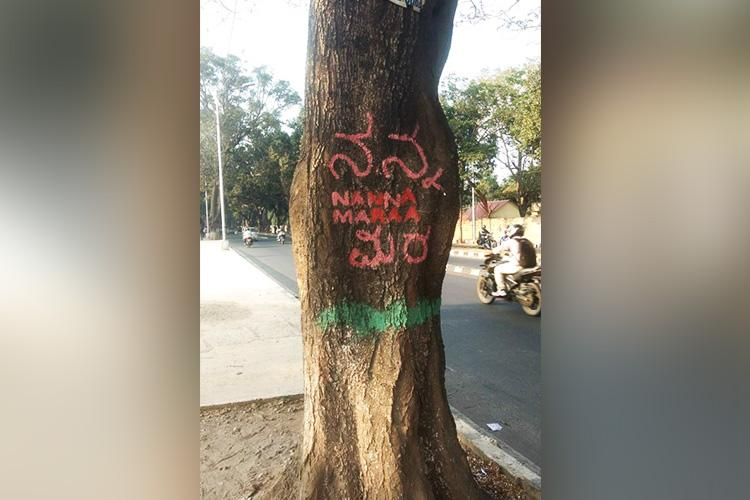 BBMP to widen Jayamahal Road to rope in experts for translocating trees