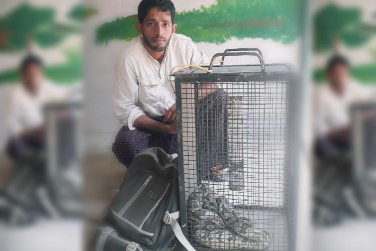 New Year hissteria Kerala man forgets stolen python on train snake travels 150 km