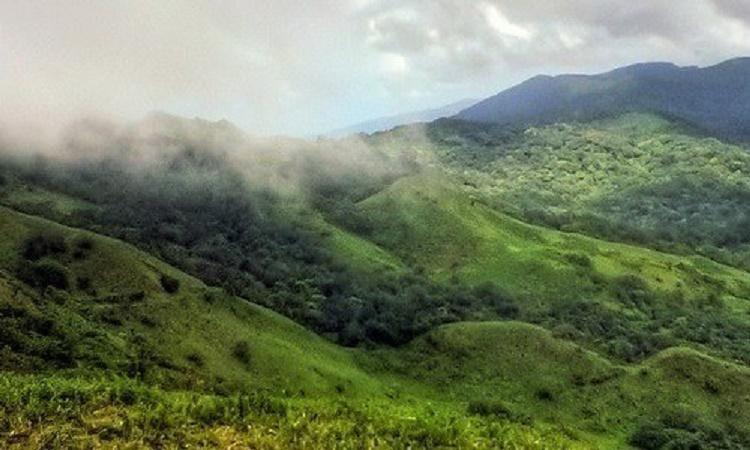Karnatakas endangered Kappatagudda Hills may get back reserve status after prolonged protest