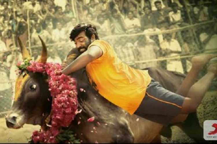 Karuppan review Vijay Sethupathi and Tanya shine in a story thats been done to death