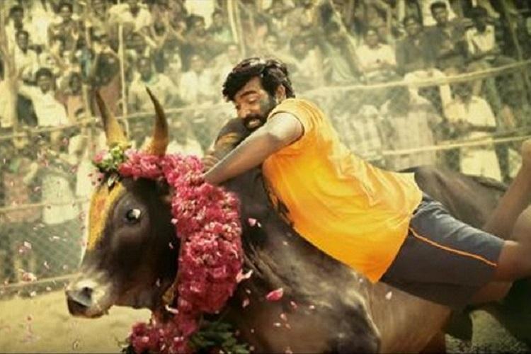 From Mersal to Karuppan jallikattu is making a big comeback to Tamil cinema