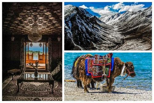 This Hyderabad family drove through Kashmir Leh and Ladakh searching for the perfect picture