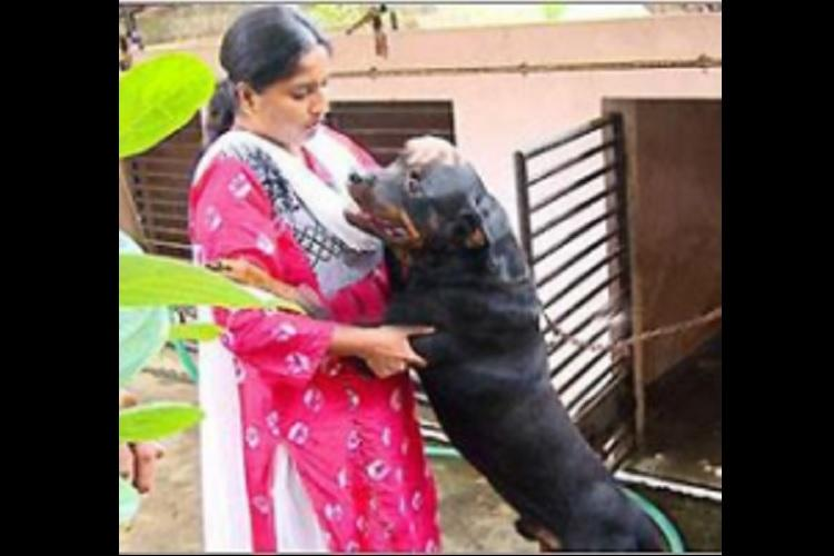 Kavitha Pillais pet dog gets attached by ED Maneka Gandhi intervenes
