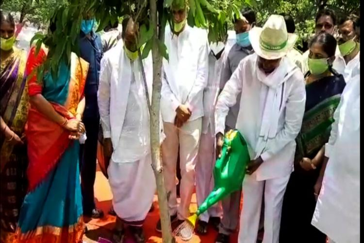 CM KCR watering a just planted sapling