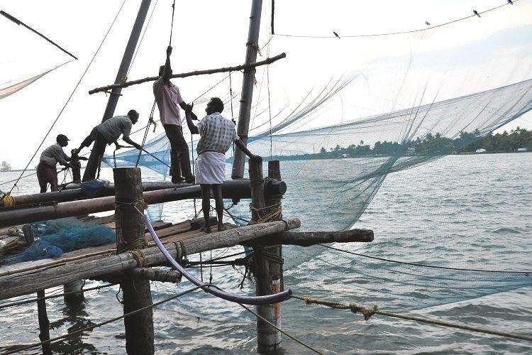 New app website to aid Kerala fisherfolk CMFRI launches initiative