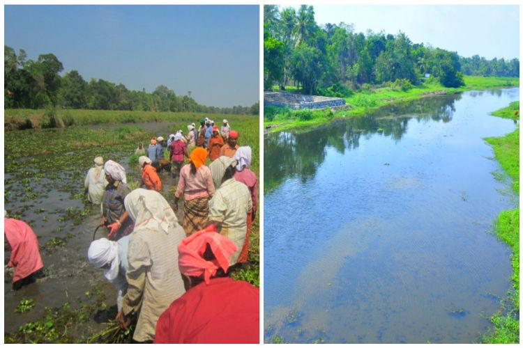 A river reborn How 700 workers cleaned a once-still river in Keralas Alappuzha
