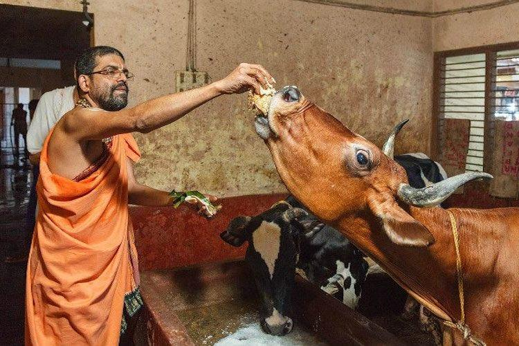 The suspicious death of an Udupi seer and the conflict around the reigning deity