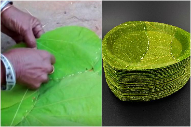 Watch Now leaves from India become eco-friendly plates in Germany