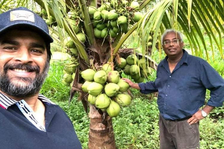 Madhavan rejuvenates barren land in TN with coconut farm, calls learning 'priceless'