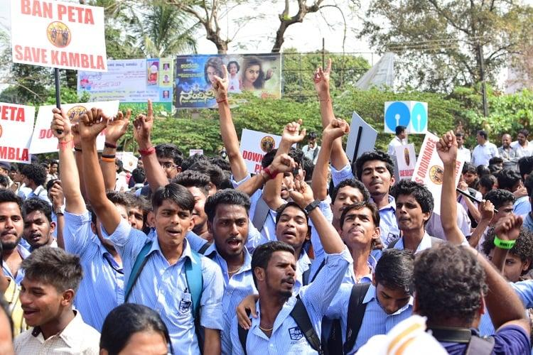 Kambala call gathers steam Students hit the streets in Mangaluru demand lifting of ban