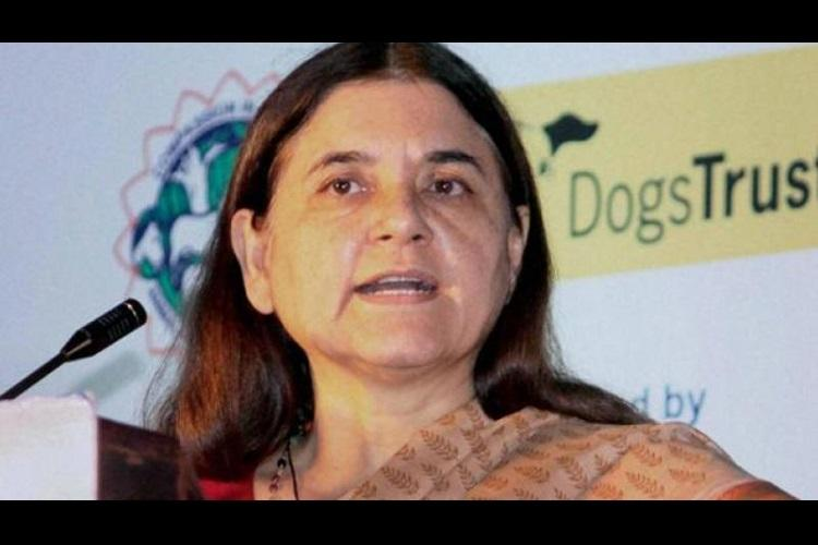 Kerala govts decision to kill dangerous stray dogs unlawful Maneka Gandhi
