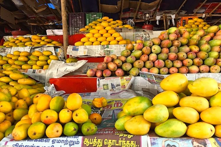 4 hour long raid in Koyambedu, police checked 39 shops to be using artificial agents to ripen Mangoes