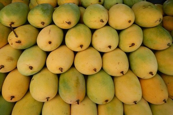 In Krishnagiri 54 mango pulping factories shut as government watches on