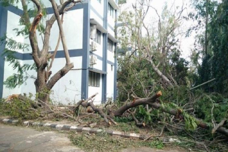 Ravaged by Vardah MIT alumni and students look to crowdfunding to make campus green again