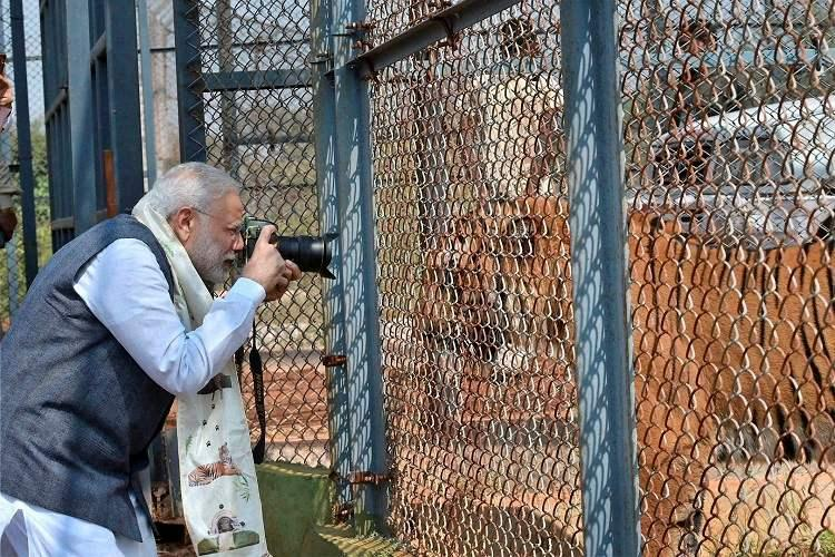 When PM Modis tryst with wildlife photography led to hilarious memes on Twitter