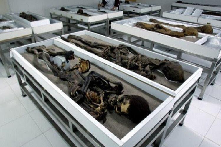Egypt discovers new necropolis containing dozens of mummies