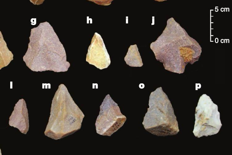 When did the first humans reach India Stone tools discovered in TN pushes back date