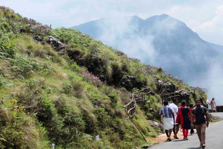 As neelakurinji season nears end tourists throng Munnar for once-in-12-year spectacle