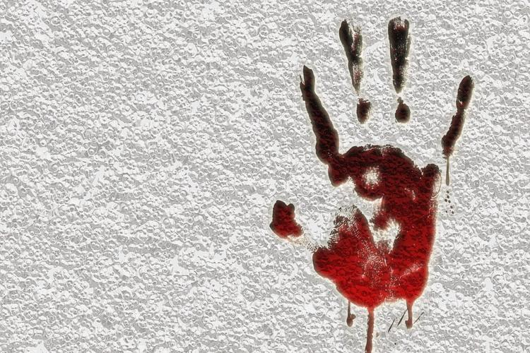 Chopped up bodies of two Telangana tribal girls found in the forests