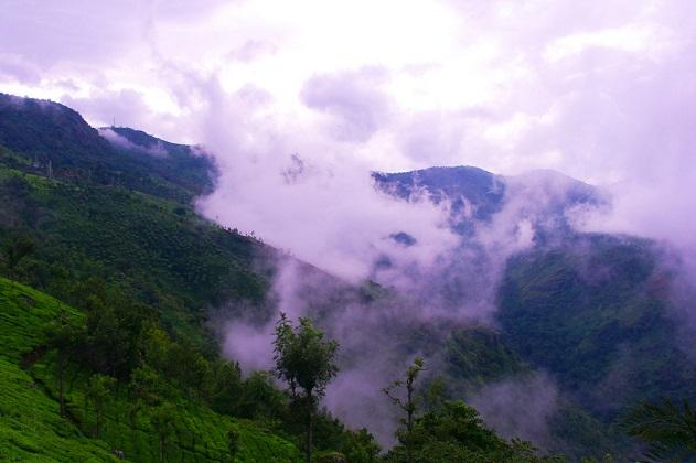 Saving the sholas To overcome drought Nilgiris forest communities return to traditional wisdom