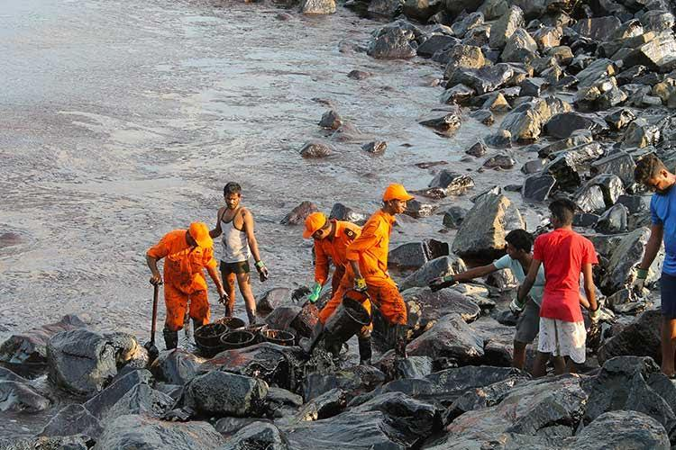 How much oil has really spilled into Chennai coast 1 tonne or 20