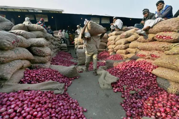 In COVID-19 hotspot Kurnool losses mount for onion farmers