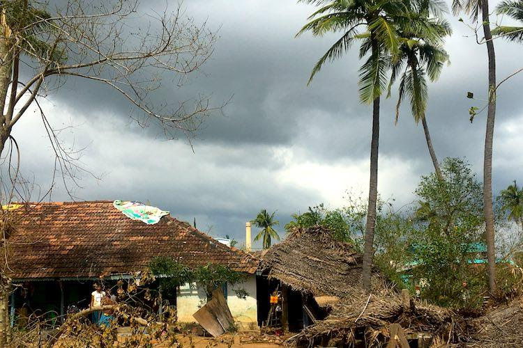 Ground report Anger apathy in cyclone-ravaged Thanjavur
