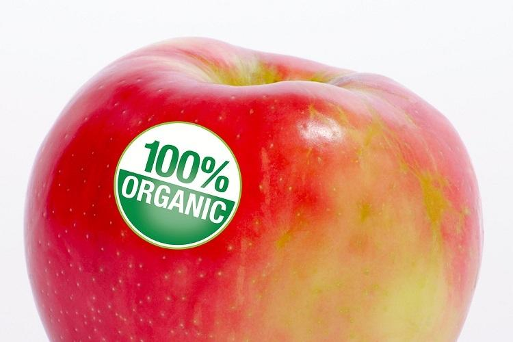 Buying organic fruits and veggies in Bengaluru Heres what you have to watch out for