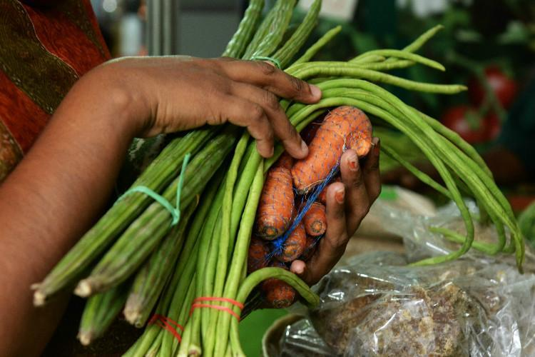 Kerala Agricultural University study finds pesticide residue in organic vegetables