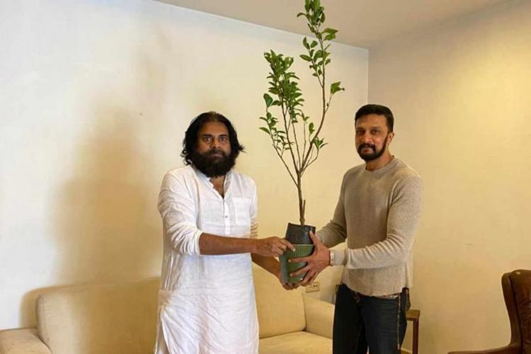 Tollywood star Pawan Kalyan gifting a sapling to Kannada actor Sudeep