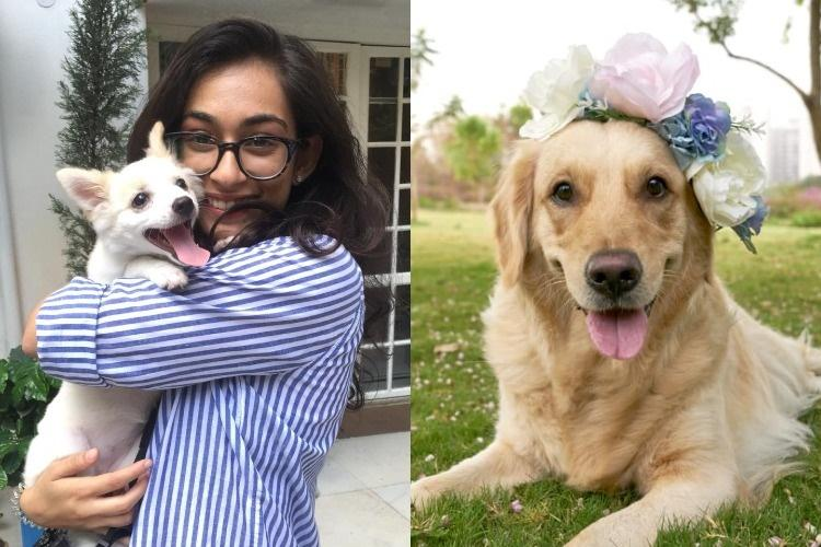 The pawparazzi is here Meet the Hyderabad 22-yr-old who photographs pets