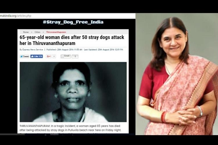 Kerala Cyber Warriors hack into Maneka Gandhis People for Animals website demand stray dogs free India
